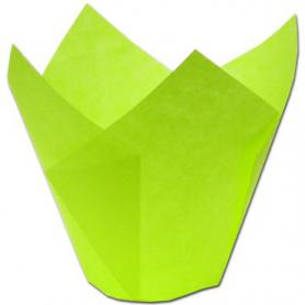 200 Pirottini TULIP CUP in carta verde - NOVACART