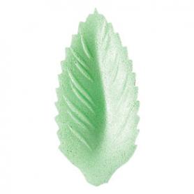 Foglia piccola cialda verde