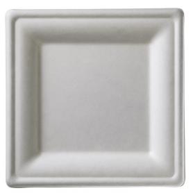50 Piatti in polpa di cellulosa quadrati LEONE
